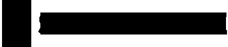 Skate Zone Retina Logo